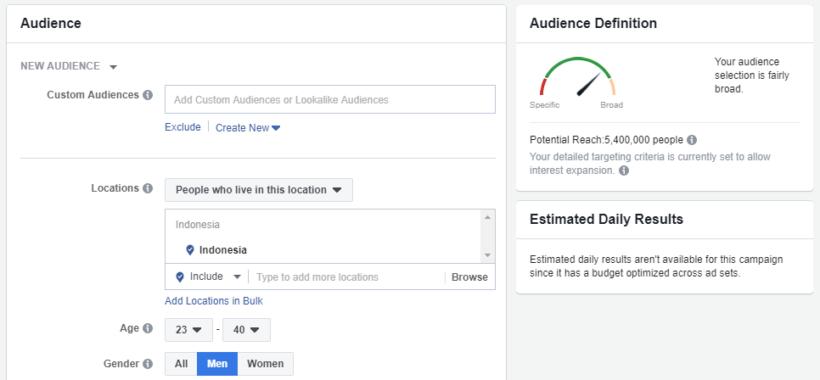 Contoh adset Facebook Ads